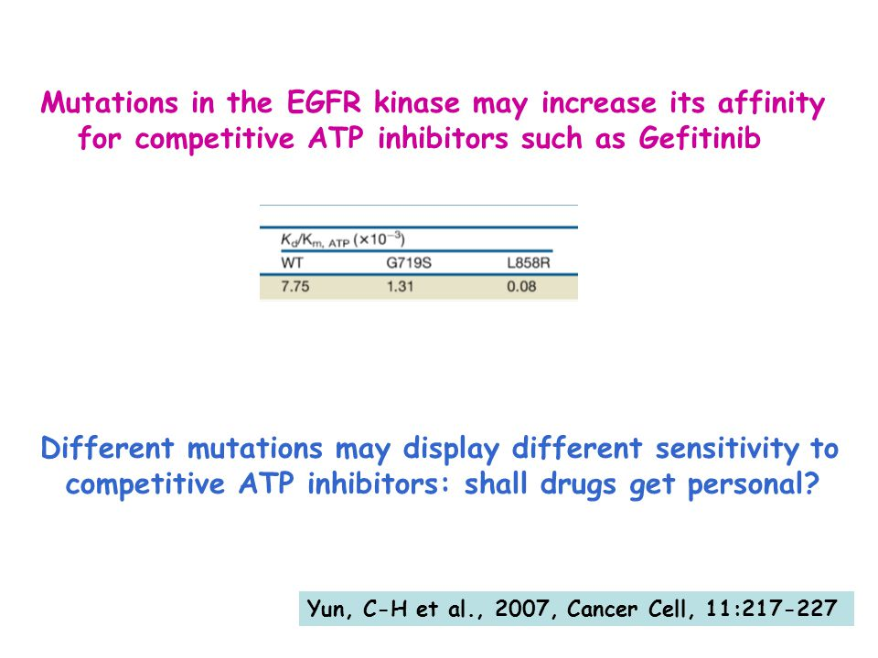 Yun, C-H et al., 2007, Cancer Cell, 11:217-227 Mutations in the EGFR kinase may increase its affinity for competitive ATP inhibitors such as Gefitinib Different mutations may display different sensitivity to competitive ATP inhibitors: shall drugs get personal