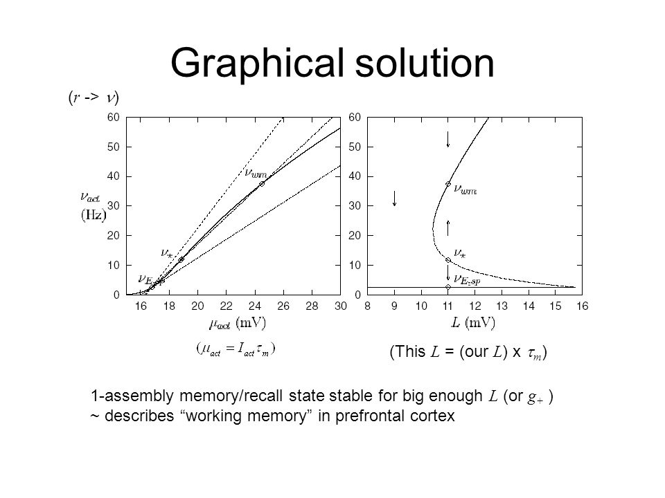 Graphical solution (This L = (our L ) x  m ) ( r -> ) 1-assembly memory/recall state stable for big enough L (or g + ) ~ describes working memory in prefrontal cortex