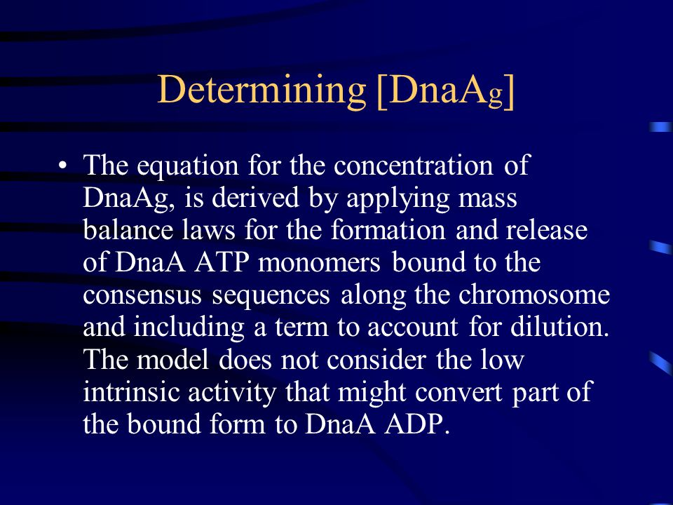 Determining [DnaA g ] The equation for the concentration of DnaAg, is derived by applying mass balance laws for the formation and release of DnaA ATP monomers bound to the consensus sequences along the chromosome and including a term to account for dilution.