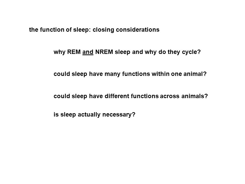 the function of sleep: closing considerations why REM and NREM sleep and why do they cycle? could sleep have many functions within one animal? could s