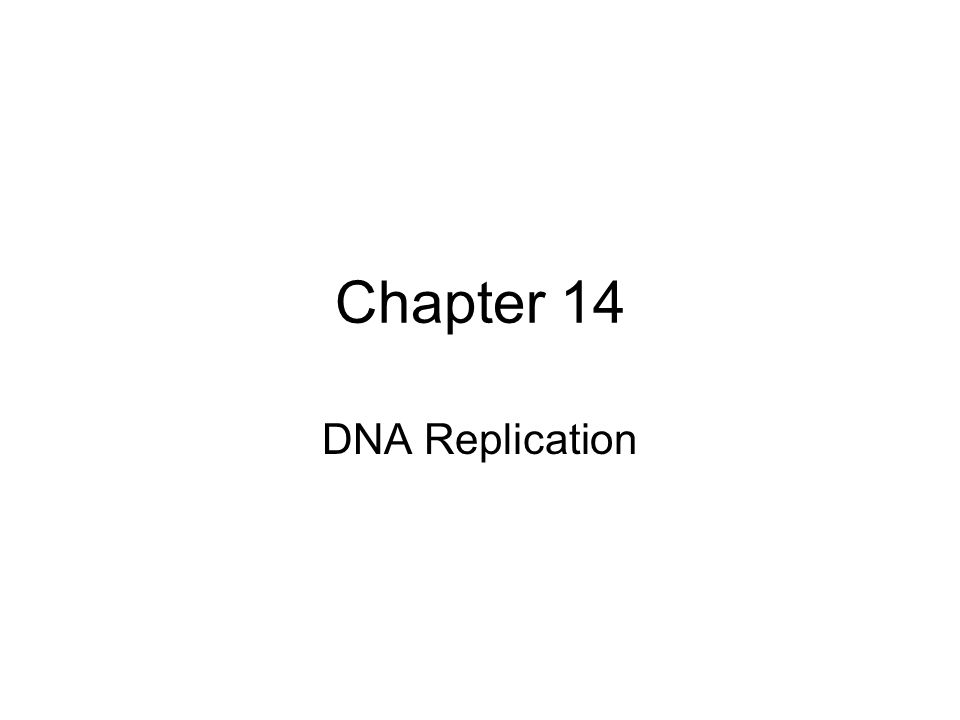 Chapter 14 DNA Replication