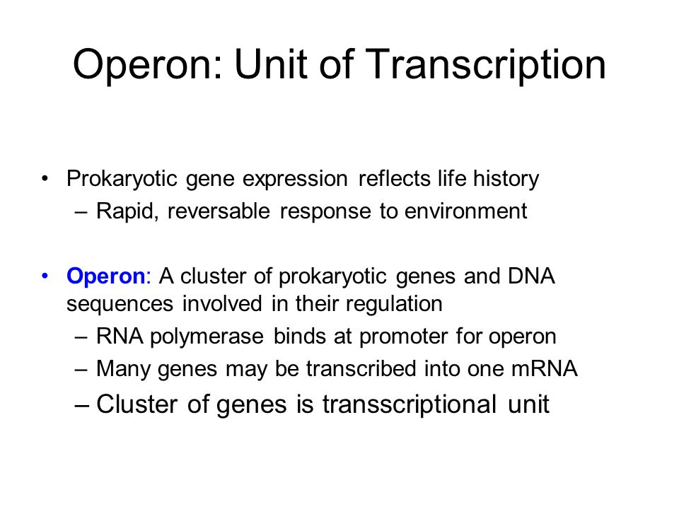 Operon: Unit of Transcription Prokaryotic gene expression reflects life history –Rapid, reversable response to environment Operon: A cluster of prokaryotic genes and DNA sequences involved in their regulation –RNA polymerase binds at promoter for operon –Many genes may be transcribed into one mRNA –Cluster of genes is transscriptional unit