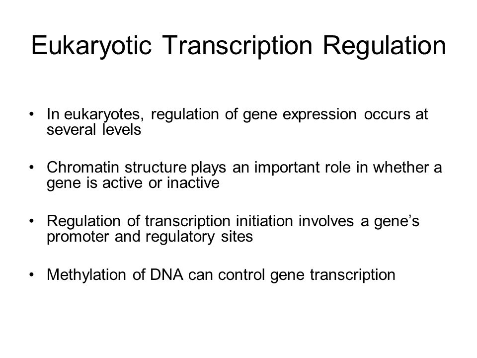 Eukaryotic Transcription Regulation In eukaryotes, regulation of gene expression occurs at several levels Chromatin structure plays an important role in whether a gene is active or inactive Regulation of transcription initiation involves a gene's promoter and regulatory sites Methylation of DNA can control gene transcription