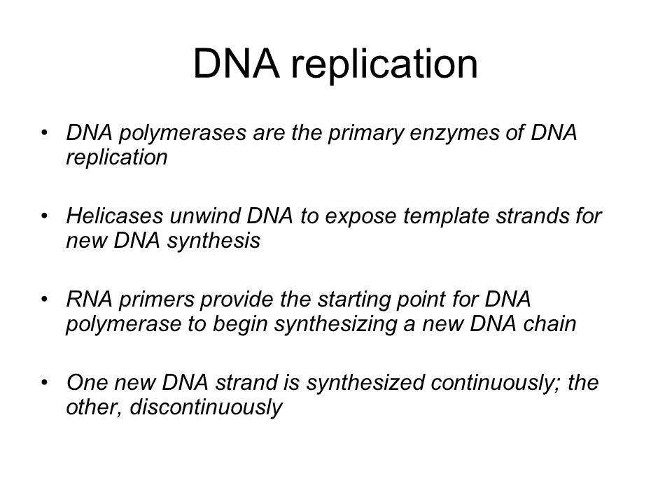 DNA replication DNA polymerases are the primary enzymes of DNA replication Helicases unwind DNA to expose template strands for new DNA synthesis RNA primers provide the starting point for DNA polymerase to begin synthesizing a new DNA chain One new DNA strand is synthesized continuously; the other, discontinuously