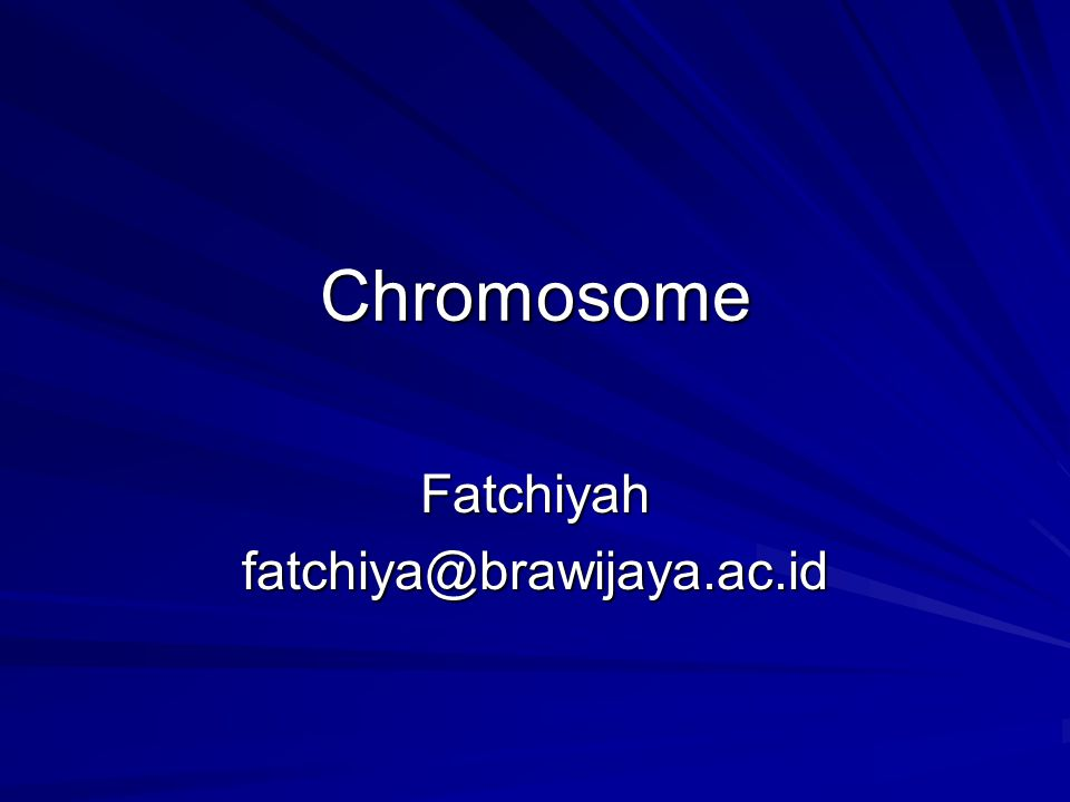 What Exactly is a chromosome.