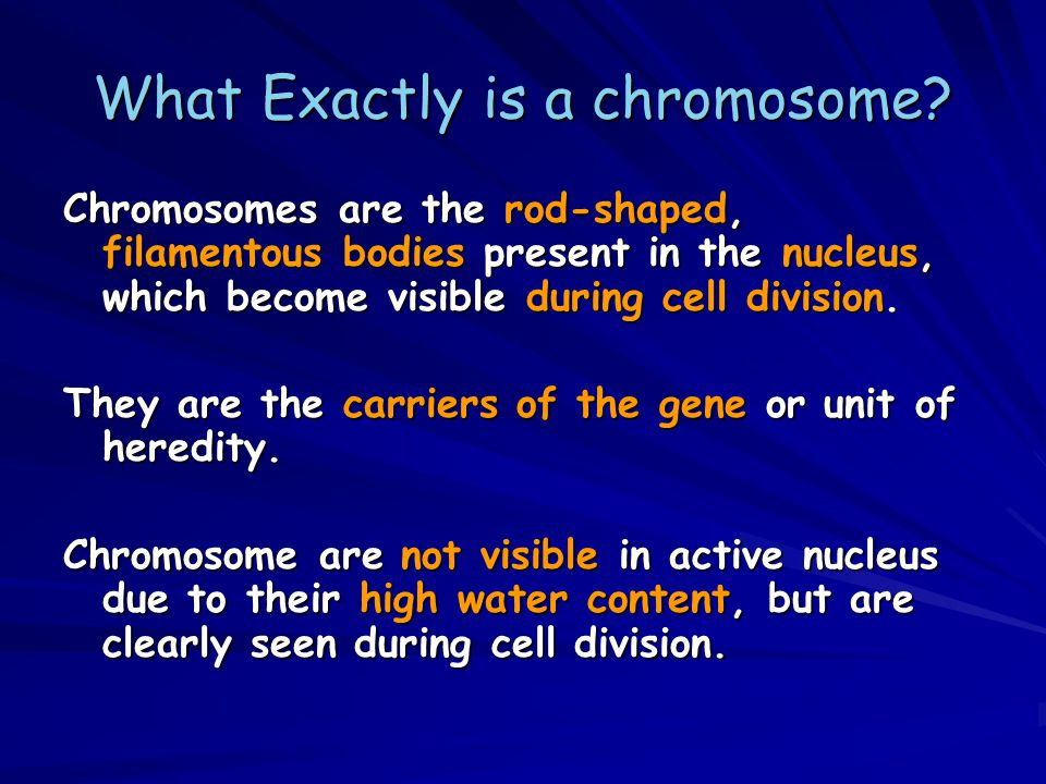 Structure of chromosome Telomere Chromosome arm Secondary constriction or NOR (nucleolar organizing region) Primary constriction or centromere Telomere