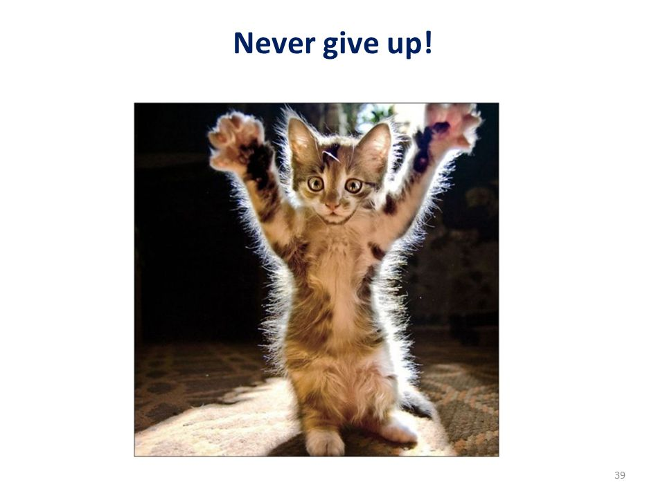 Never give up! 39