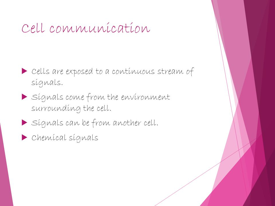 Cell communication  Cells are exposed to a continuous stream of signals.