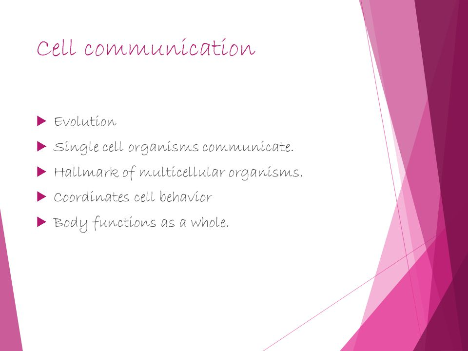 Cell communication  Evolution  Single cell organisms communicate.