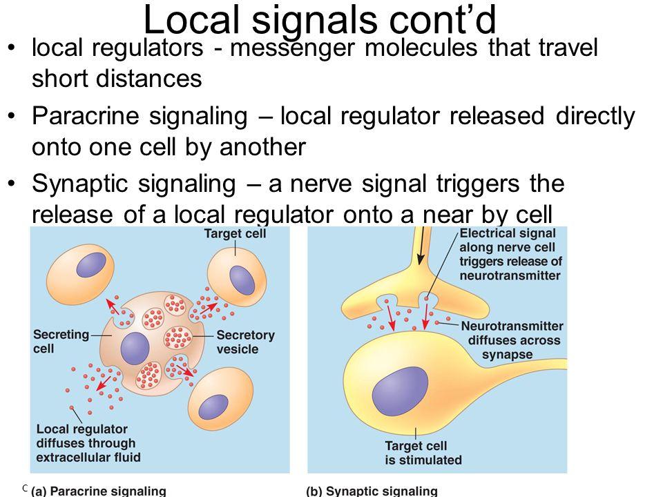 Long Distance Signaling Hormones – chemical messengers that travel long distance.