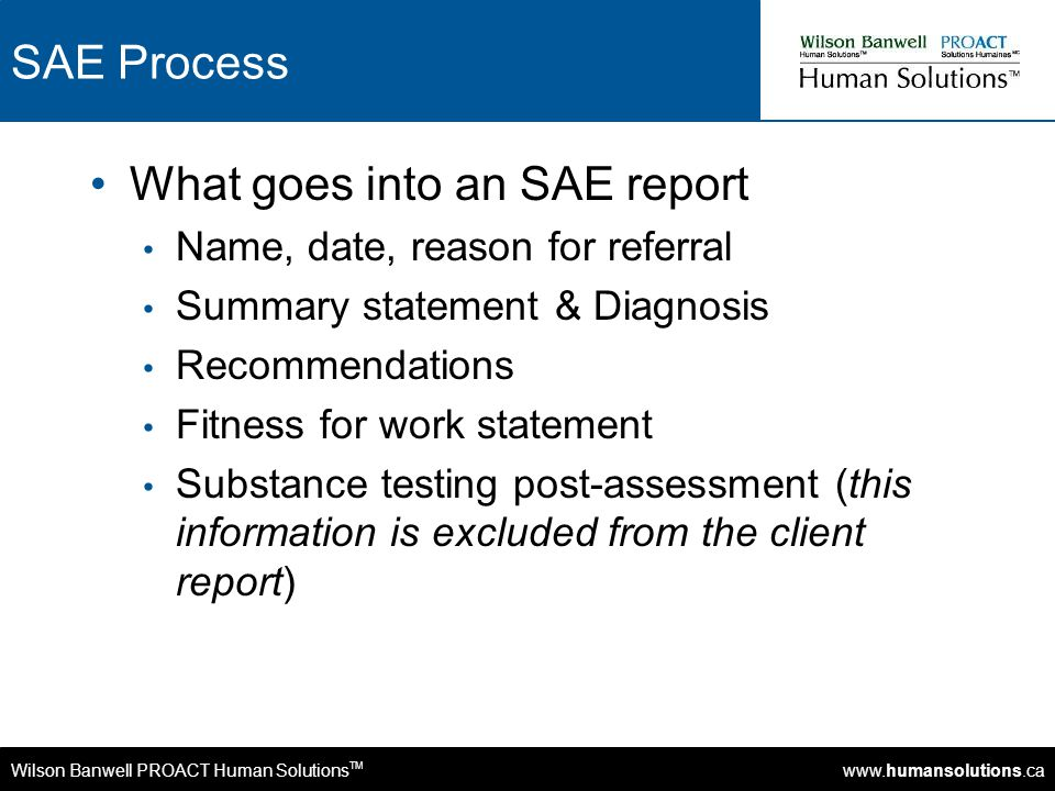 Wilson Banwell PROACT Human Solutions TM www.humansolutions.ca SAE Process What goes into an SAE report Name, date, reason for referral Summary statem