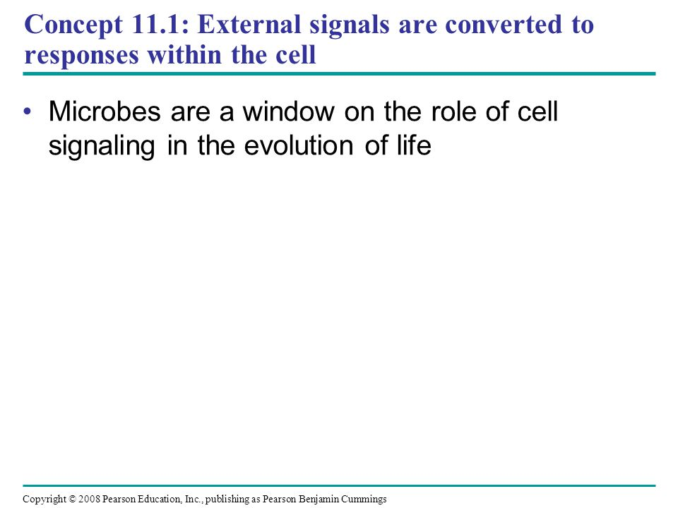 Concept 11.1: External signals are converted to responses within the cell Microbes are a window on the role of cell signaling in the evolution of life