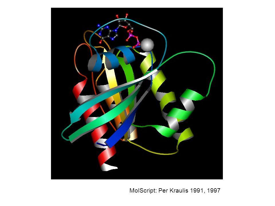 MolScript: Per Kraulis 1991, 1997