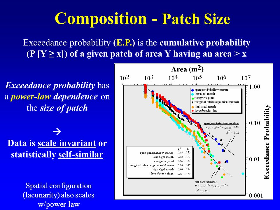 Composition - Patch Size Exceedance probability (E.P.) is the cumulative probability (P [Y ≥ x]) of a given patch of area Y having an area > x Exceedance probability has a power-law dependence on the size of patch  Data is scale invariant or statistically self-similar Spatial configuration (lacunarity) also scales w/power-law