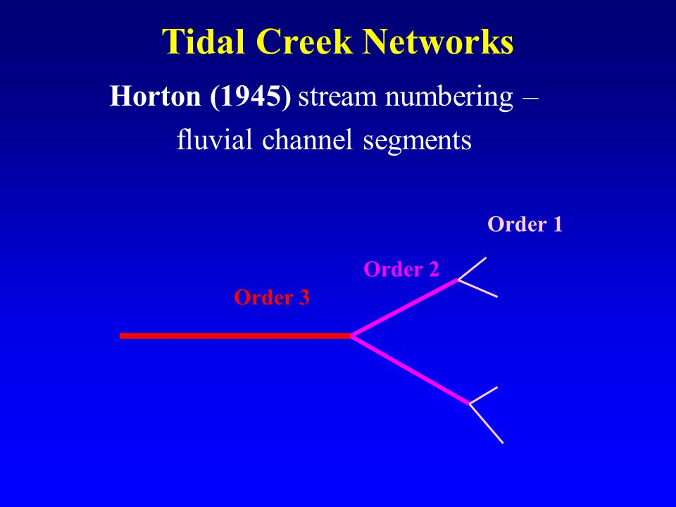 Horton (1945) stream numbering – fluvial channel segments Tidal Creek Networks Order 3 Order 2 Order 1