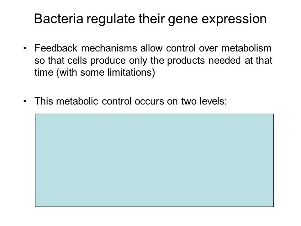 Bacteria regulate their gene expression Feedback mechanisms allow control over metabolism so that cells produce only the products needed at that time (with some limitations) This metabolic control occurs on two levels: 1.