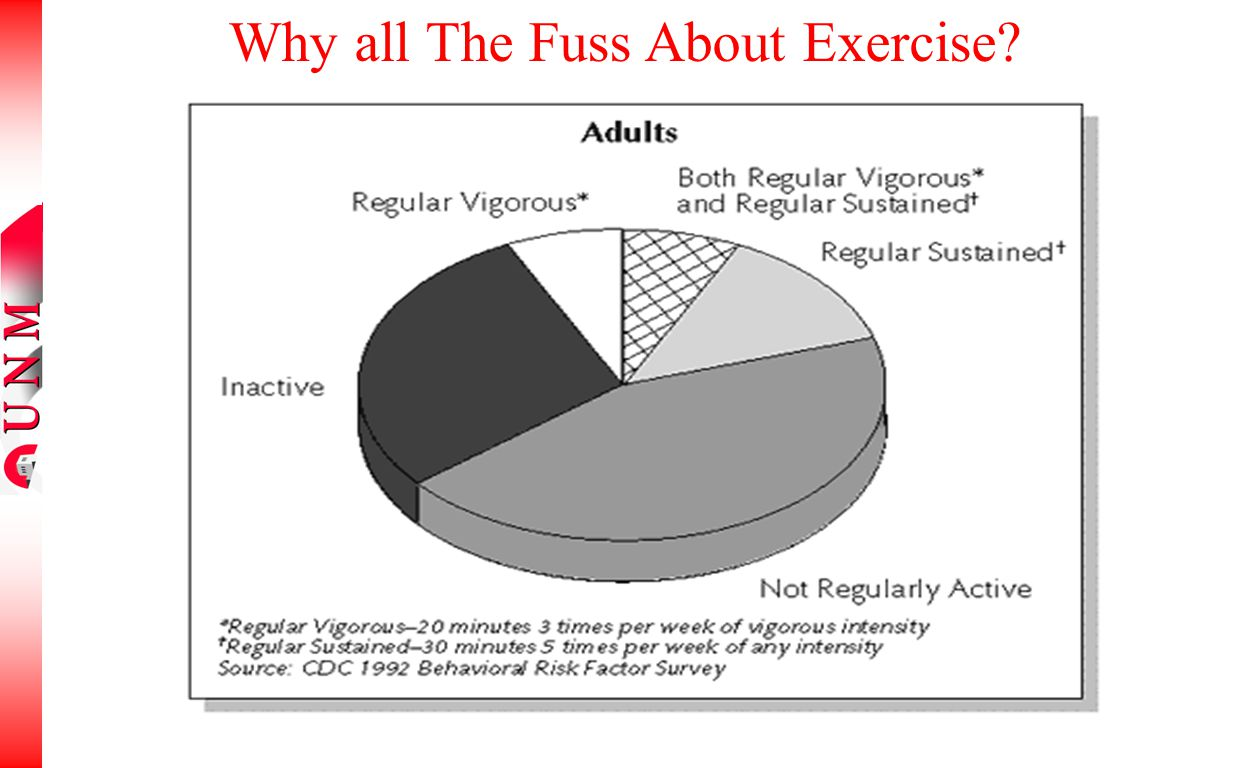 Why all The Fuss About Exercise