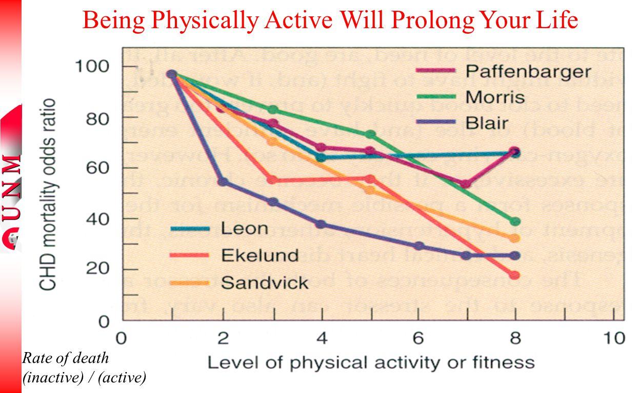 Rate of death (inactive) / (active) Being Physically Active Will Prolong Your Life