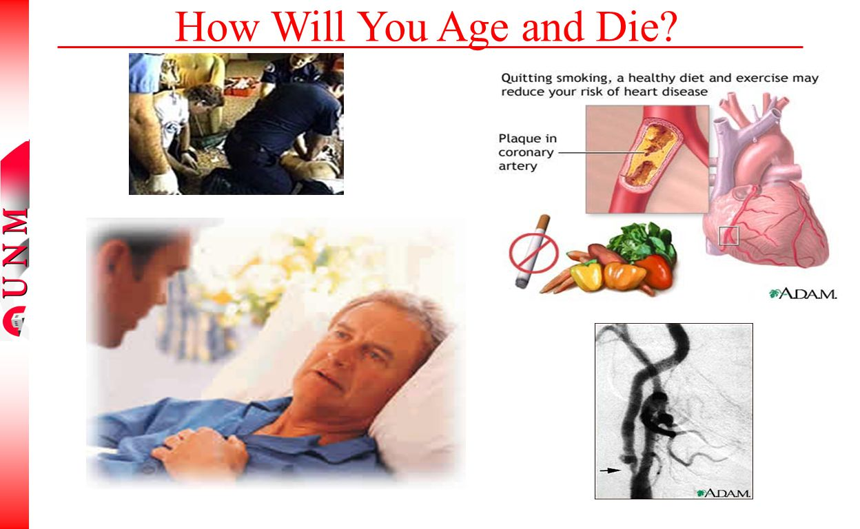 How Will You Age and Die?