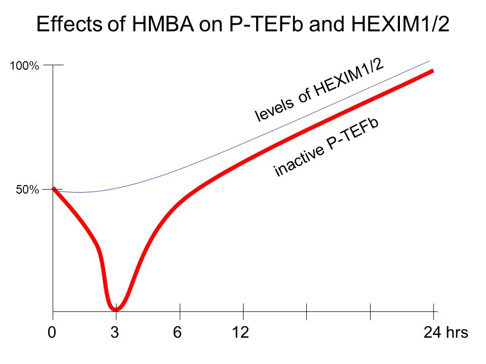 0 3 6 12 24 hrs 100% 50% inactive P-TEFb levels of HEXIM1/2 Effects of HMBA on P-TEFb and HEXIM1/2