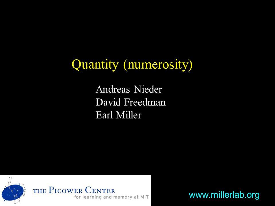 Quantity (numerosity) Andreas Nieder David Freedman Earl Miller www.millerlab.org