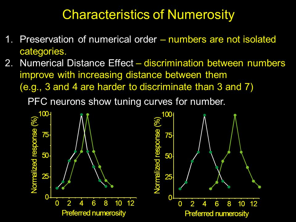 Characteristics of Numerosity 1.Preservation of numerical order – numbers are not isolated categories.