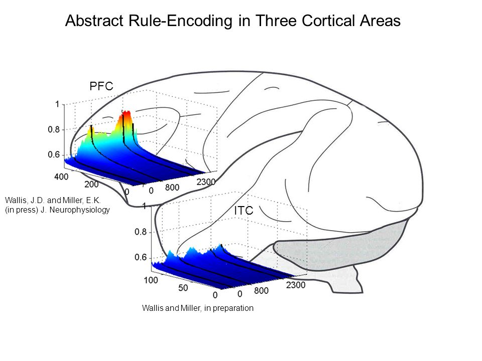 PFC ITC Abstract Rule-Encoding in Three Cortical Areas Wallis and Miller, in preparation Wallis, J.D.