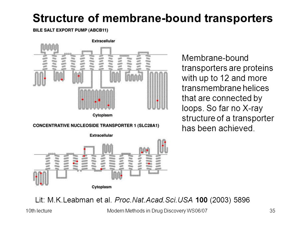 10th lectureModern Methods in Drug Discovery WS06/0735 Structure of membrane-bound transporters Membrane-bound transporters are proteins with up to 12 and more transmembrane helices that are connected by loops.