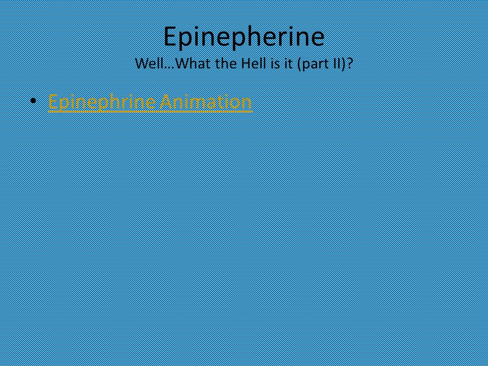 Epinepherine Well…What the Hell is it (part II) Epinephrine Animation