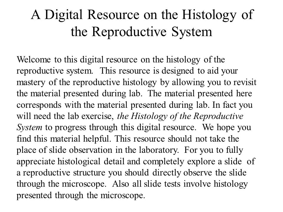Welcome to this digital resource on the histology of the reproductive system.