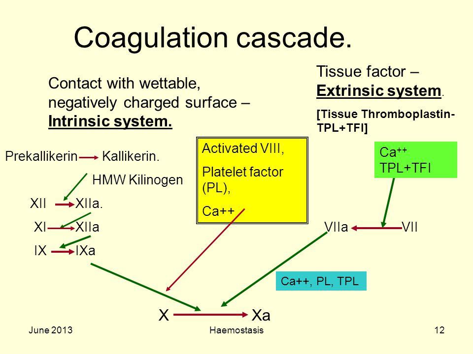 June 2013Haemostasis12 Coagulation cascade. Contact with wettable, negatively charged surface – Intrinsic system. Prekallikerin Kallikerin. HMW Kilino