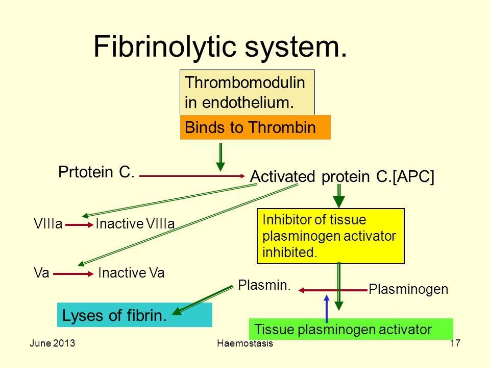 June 2013Haemostasis17 Fibrinolytic system. Thrombomodulin in endothelium. Binds to Thrombin Prtotein C. Activated protein C.[APC] Inhibitor of tissue