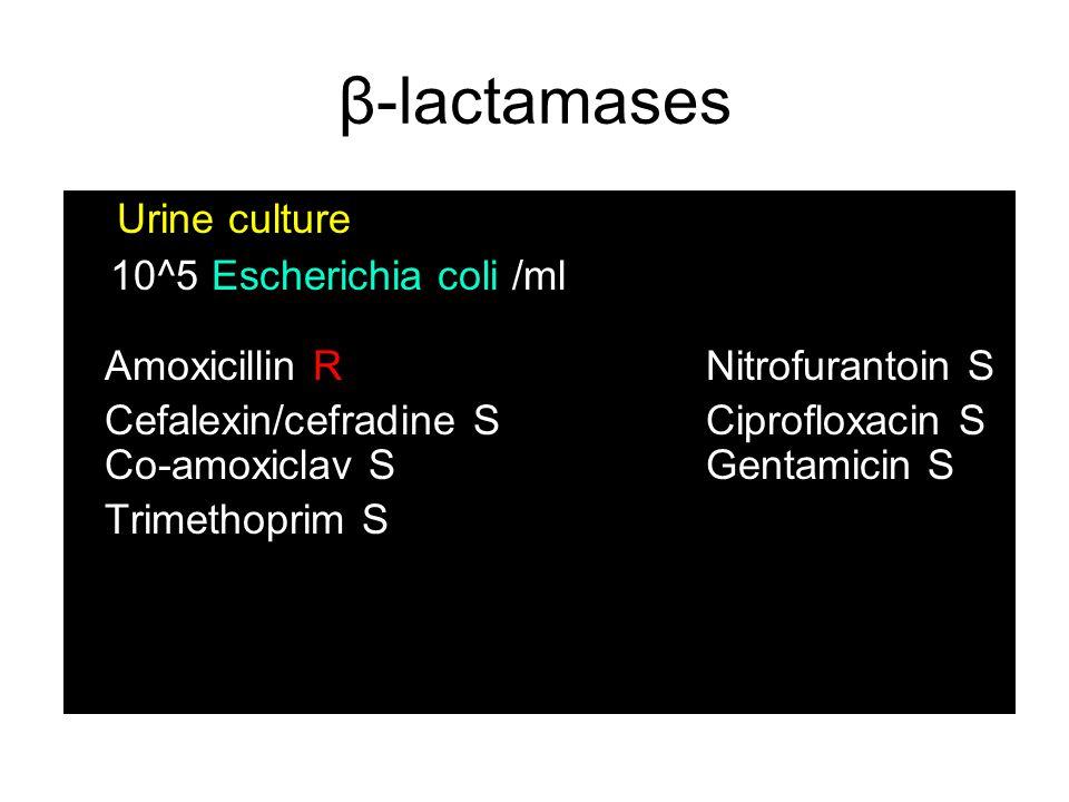 β-lactamases Urine culture Auth 10^5 Escherichia coli /ml Amoxicillin R Nitrofurantoin S Cefalexin/cefradine SCiprofloxacin S Co-amoxiclav SGentamicin S Trimethoprim S