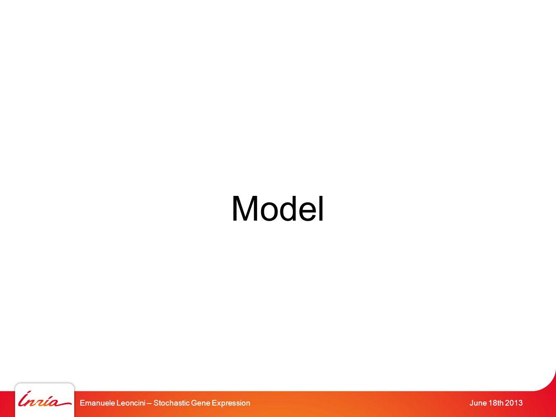 Emanuele Leoncini -- Stochastic Gene ExpressionJune 18th 2013 Model