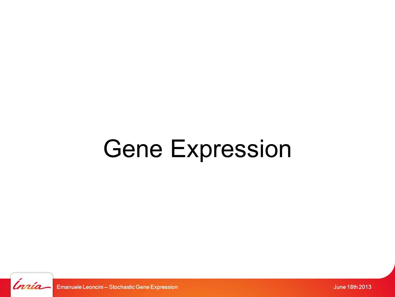 Emanuele Leoncini -- Stochastic Gene ExpressionJune 18th 2013 Gene Expression
