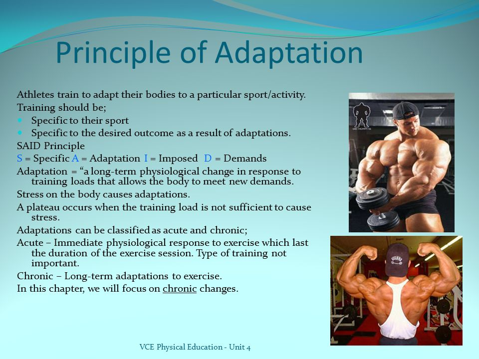 Principle of Adaptation Athletes train to adapt their bodies to a particular sport/activity. Training should be; Specific to their sport Specific to t