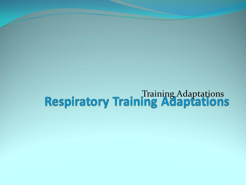 Training Adaptations