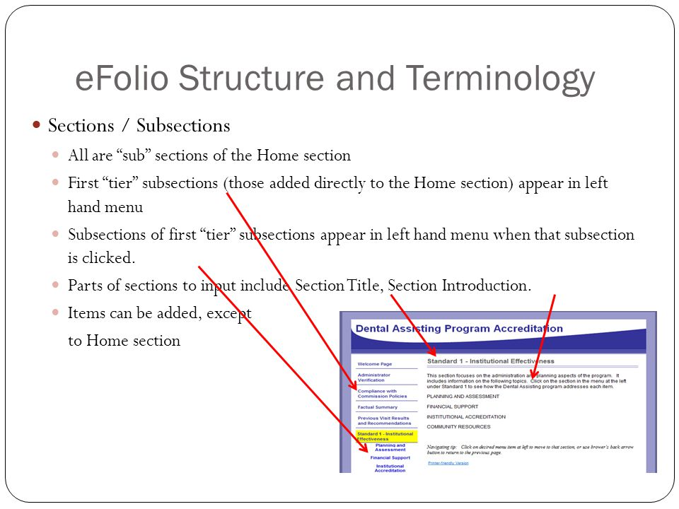 eFolio Structure and Terminology Sections / Subsections All are sub sections of the Home section First tier subsections (those added directly to the Home section) appear in left hand menu Subsections of first tier subsections appear in left hand menu when that subsection is clicked.