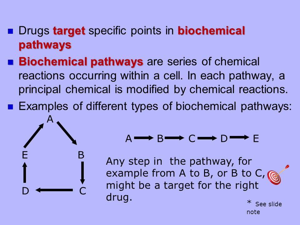 targetbiochemical pathways Drugs target specific points in biochemical pathways Biochemical pathways Biochemical pathways are series of chemical reactions occurring within a cell.