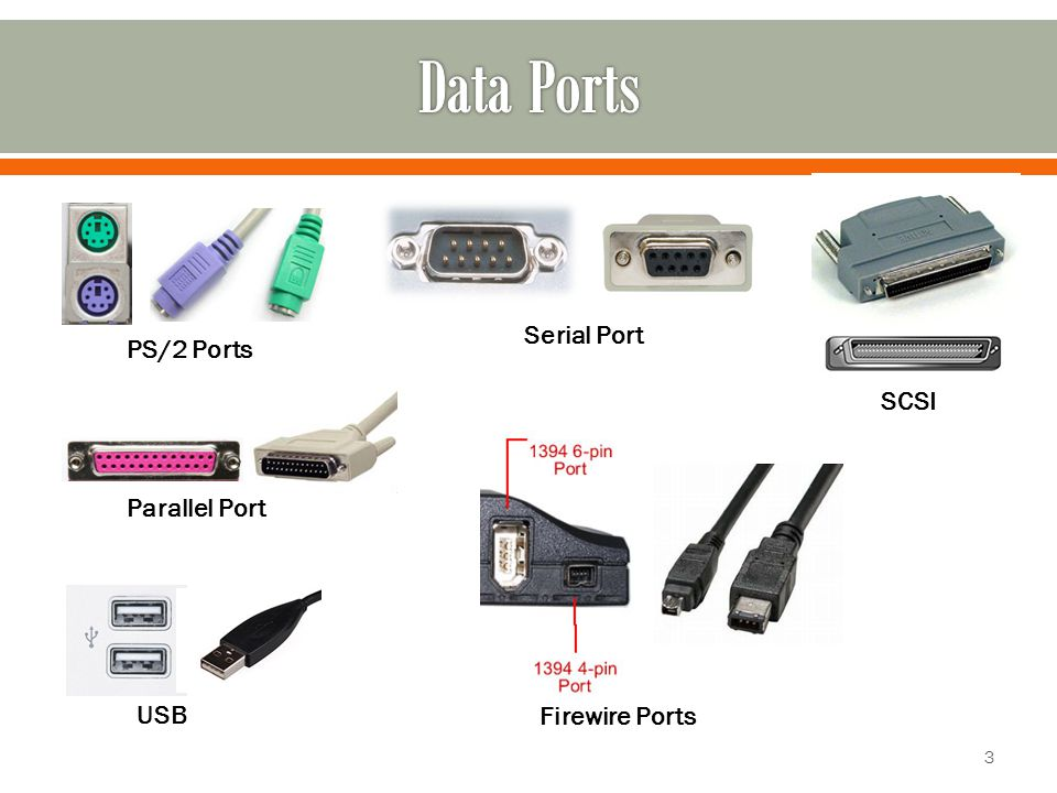 PS/2 Ports Serial Port Parallel Port USB SCSI Firewire Ports 3