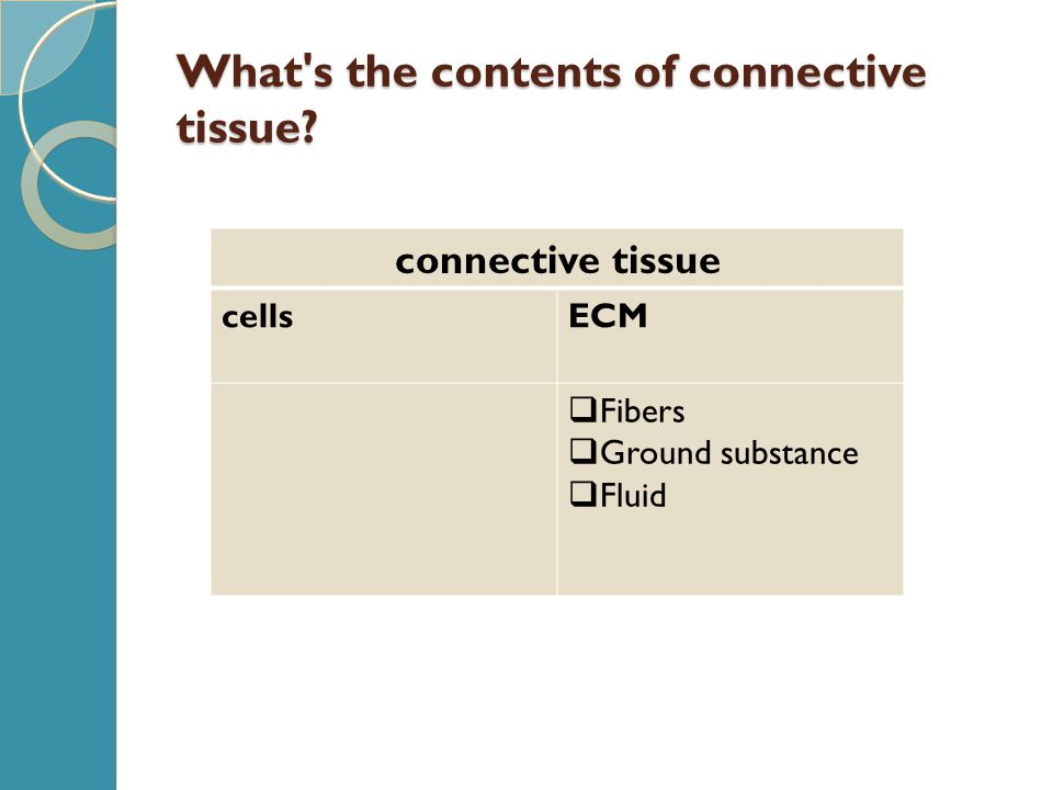 What's the contents of connective tissue? connective tissue cellsECM  Fibers  Ground substance  Fluid