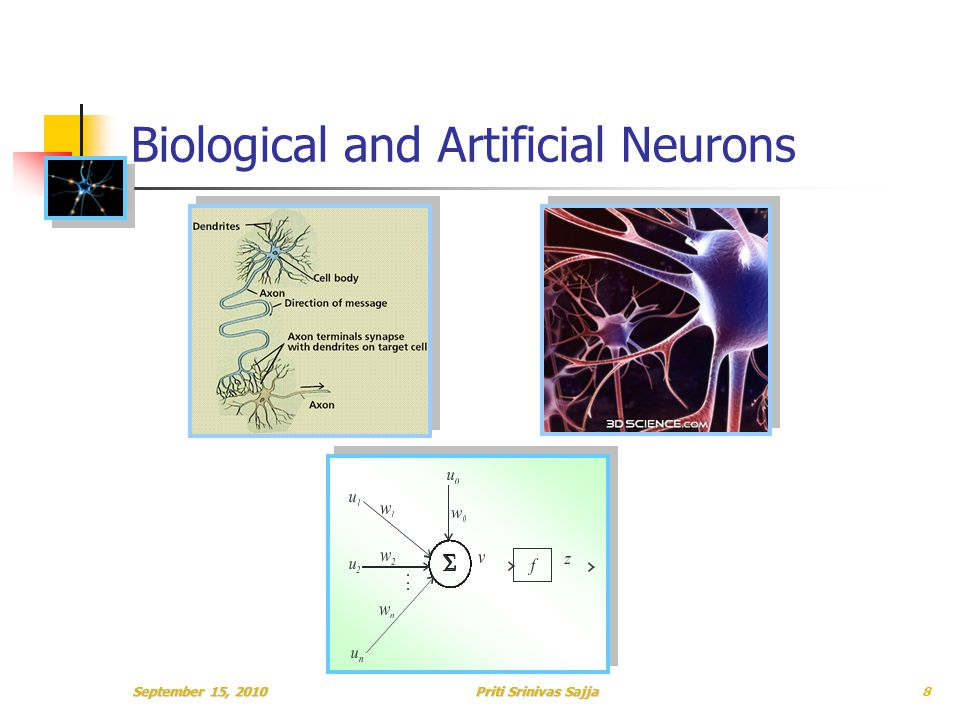 Priti Srinivas Sajja Biological and Artificial Neurons 8
