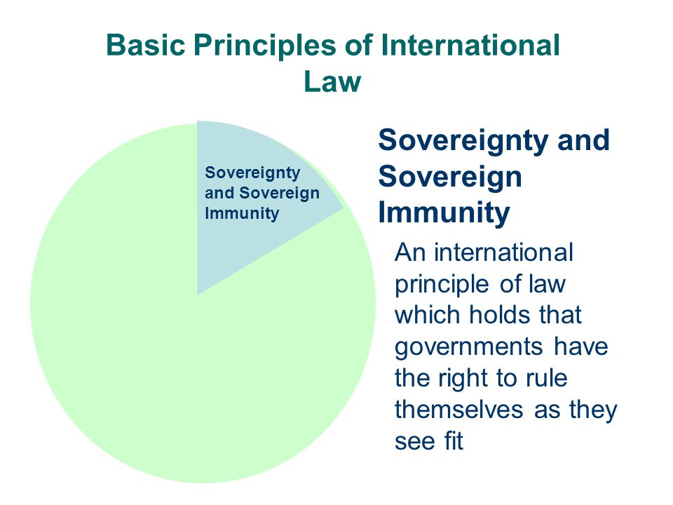 Basic Principles of International Law Sovereignty and Sovereign Immunity An international principle of law which holds that governments have the right to rule themselves as they see fit Sovereignty and Sovereign Immunity