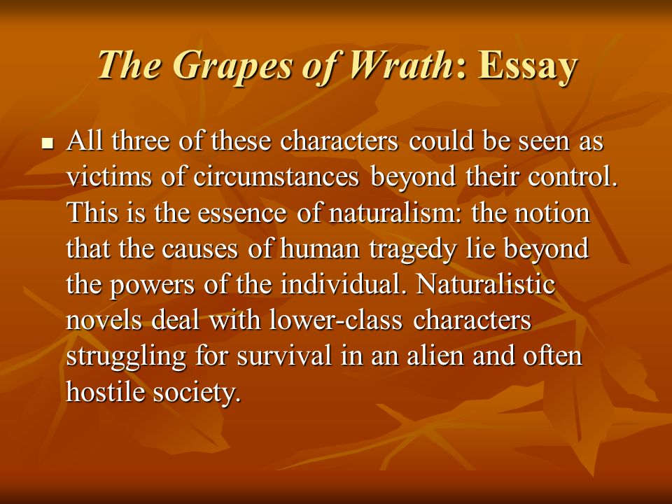 The Grapes of Wrath: Essay All three of these characters could be seen as victims of circumstances beyond their control.