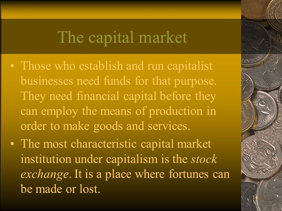 14 The capital market Those who establish and run capitalist businesses need funds for that purpose.