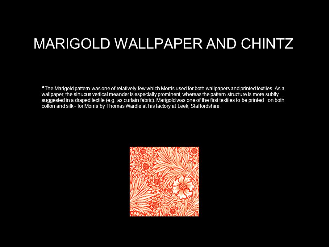 MARIGOLD WALLPAPER AND CHINTZ The Marigold pattern was one of relatively few which Morris used for both wallpapers and printed textiles.
