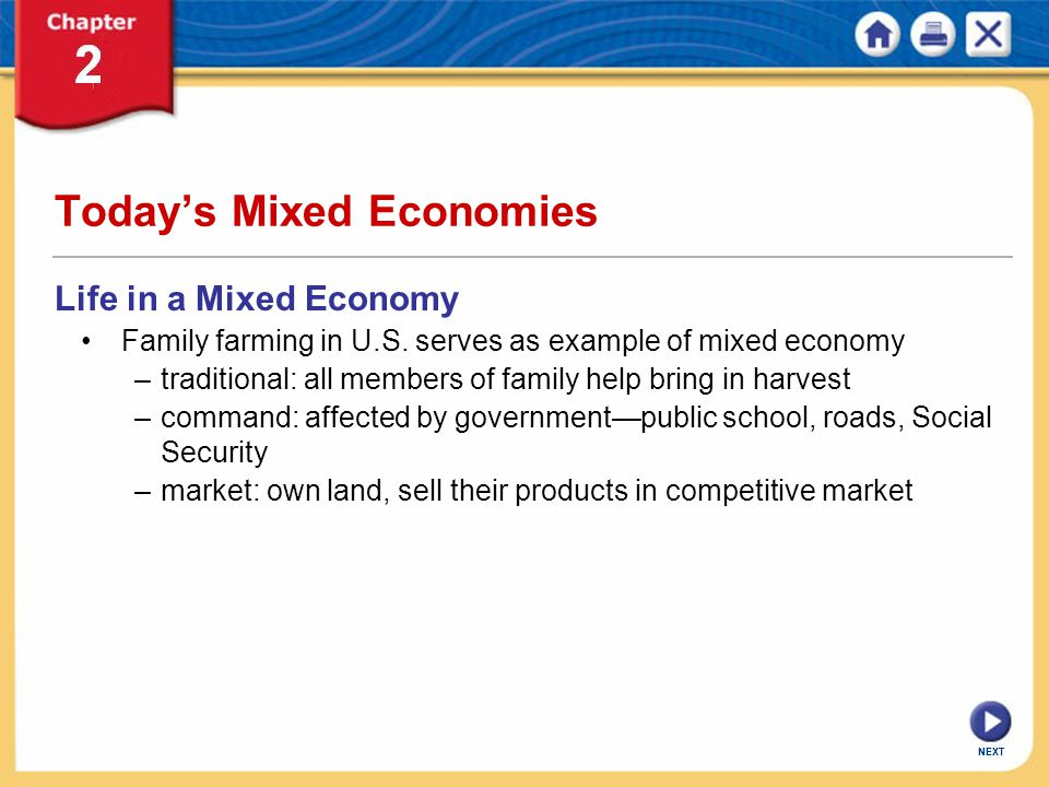 NEXT Today's Mixed Economies Life in a Mixed Economy Family farming in U.S. serves as example of mixed economy –traditional: all members of family hel