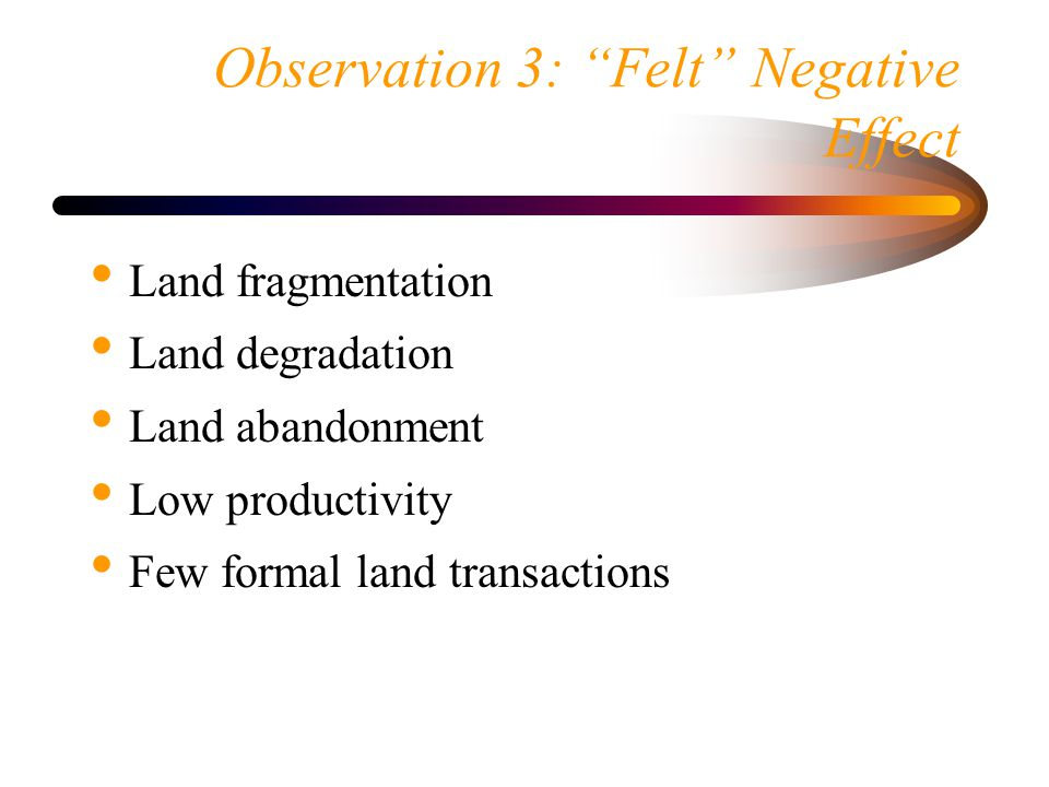 Observation 3: Felt Negative Effect Land fragmentation Land degradation Land abandonment Low productivity Few formal land transactions