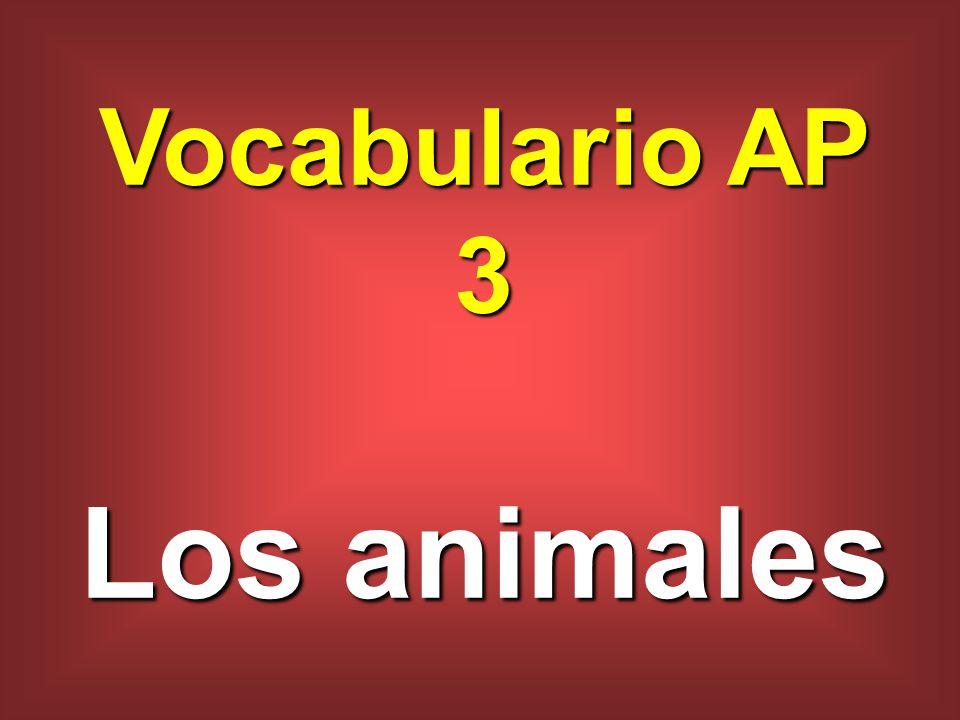 Vocabulario AP 3 Los animales