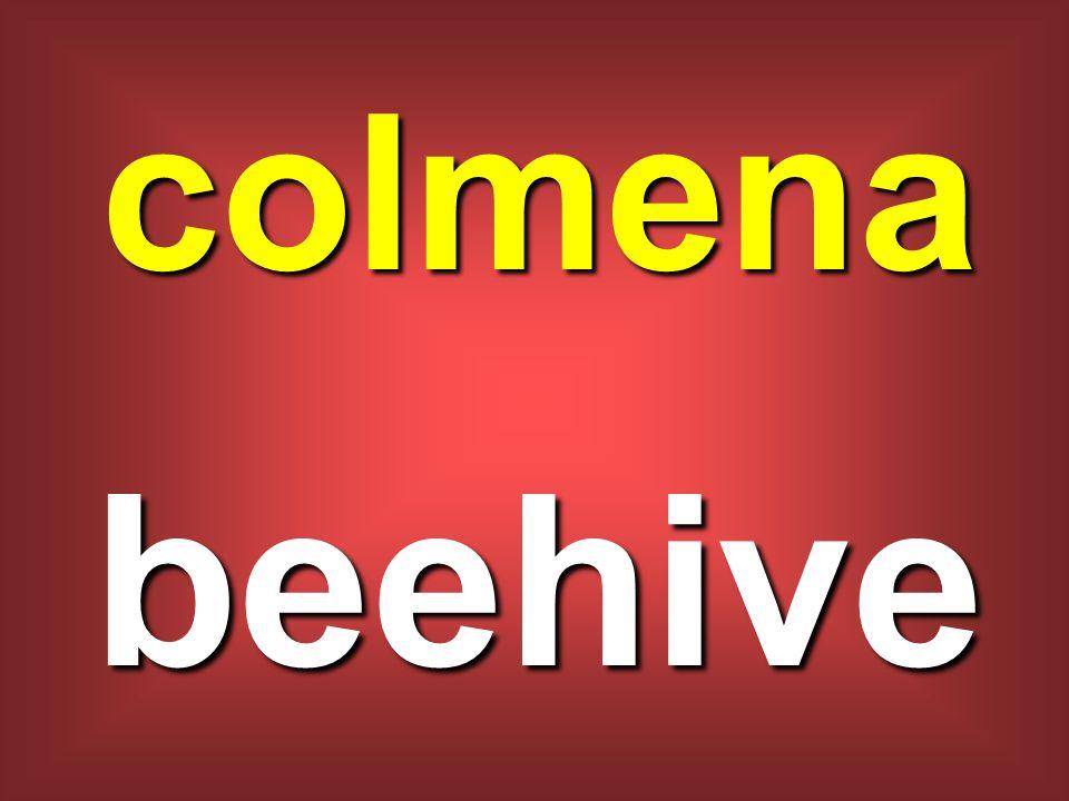 colmena beehive
